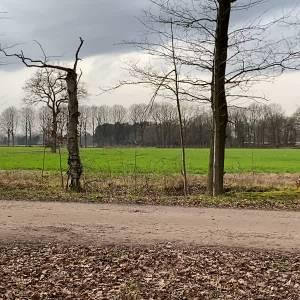 Plannen voor bijzonder woningproject Sint-Oedenrode
