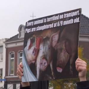 Rustige protestactie bij varkenswinkel Oijnk in Veghel