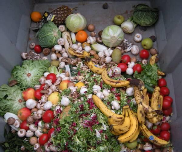 Scholen Meierijstad massaal aan de slag met thema voedselverspilling