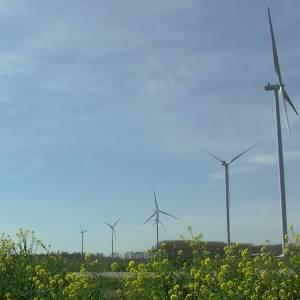 Tegenstanders windmolens Rooise Heide moeten geduld hebben