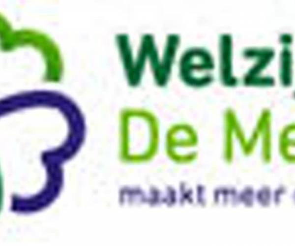 Welzijn De Meierij helpt bij lezen en schrijven