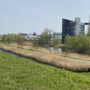 Raad van State grotendeels akkoord met 4 windturbines langs A50