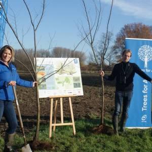 25.000 extra bomen in de Geelders