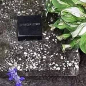 Inzamelingsactie om graf van bij brand omgekomen familie te behouden