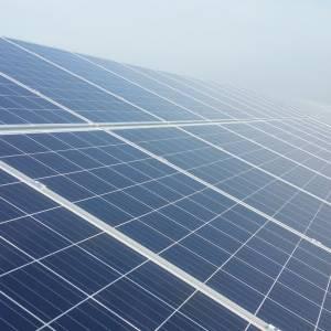 VVD Meierijstad suggereert strengere voorwaarden voor zonneparken